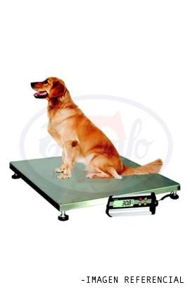 Plataforma para pesaje de animales - 200 Kg.